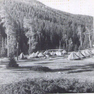 Overview of camp